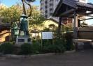 蒲原浄光寺1